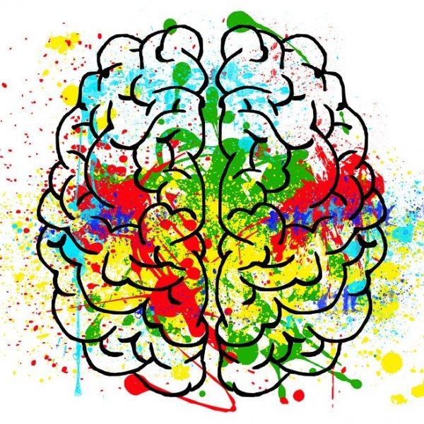 durerea - creier